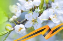 Режим работы в майские каникулы с 01 по 10 мая 2021 г.