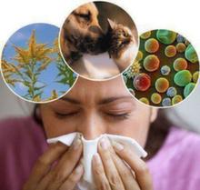 Возобновление кожных аллергопроб