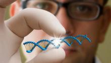 ДНК-тесты по доступной цене